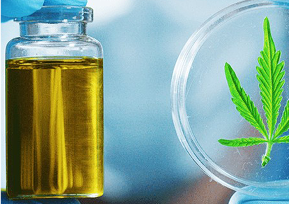 NACPT Extraction Head – Cannabis Modern Extraction Practices