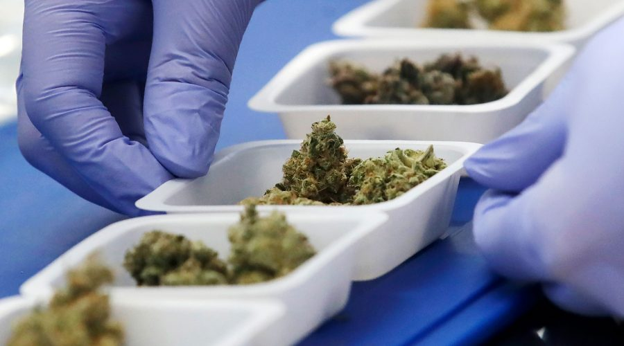Cannabis Compliance Testing blog banner image NACPT